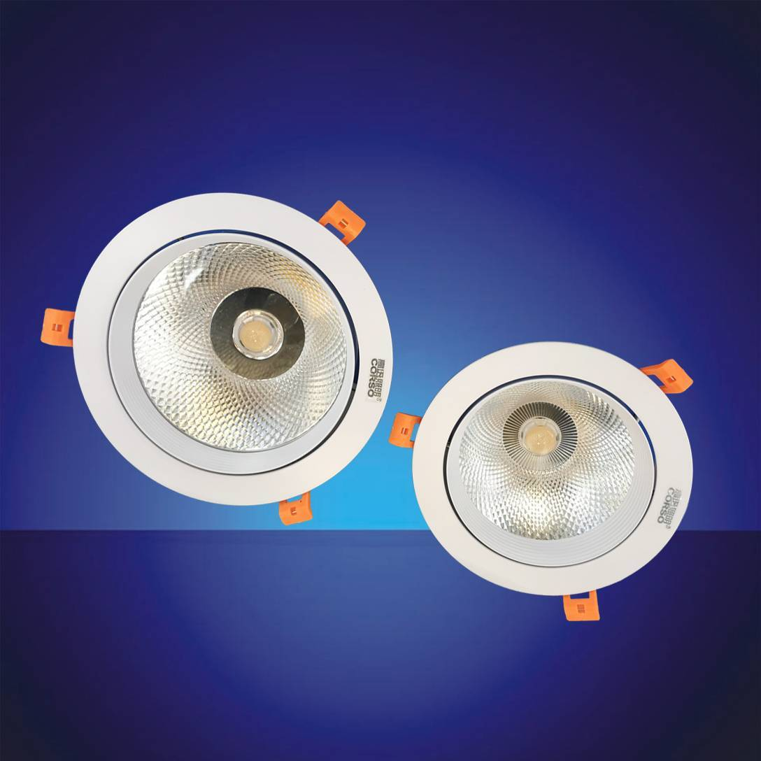 CD-1 LED  Downlight