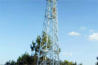 What are the structural characteristics of monitoring tower