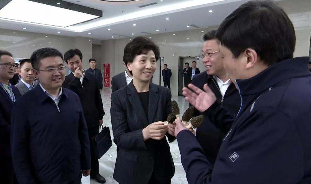 谌贻琴省长与别平董事长交谈