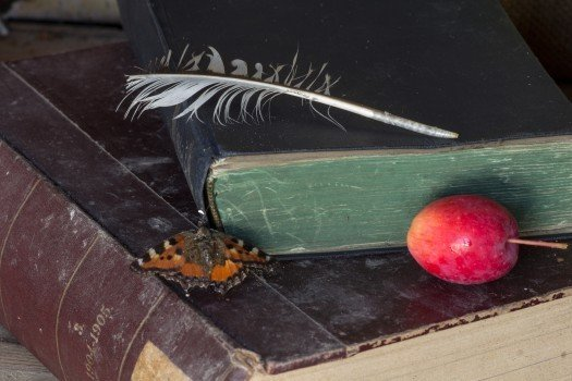 still-life-old-books-spring-apple
