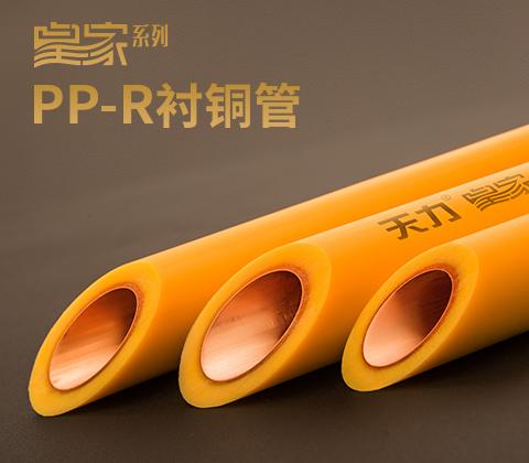 皇家PP-R衬铜管