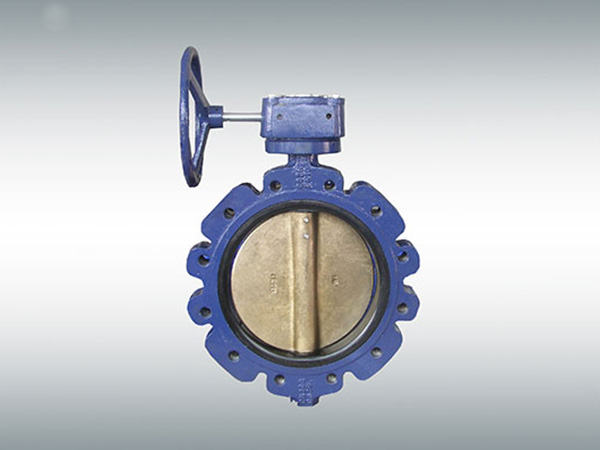 LT German standard hard seat butterfly valve with pin