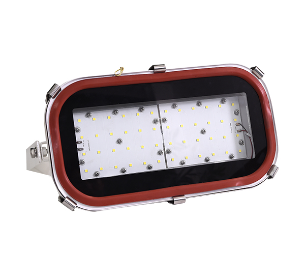 LTG15-60   LTG15-100  LED flood light