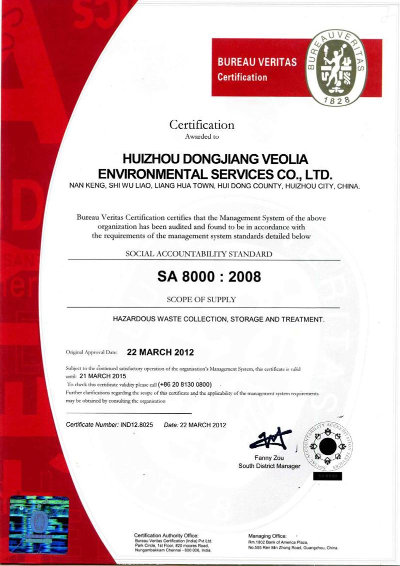 SA:8000  2008 英文版