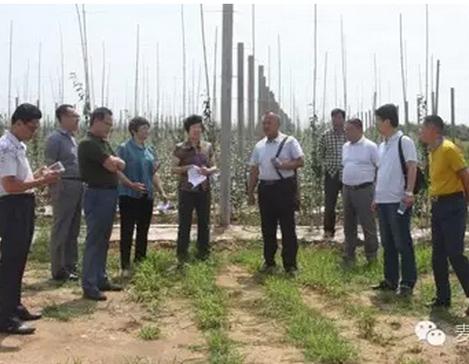 煙臺農業局等相關領導專家到通達集團旗下基地調研