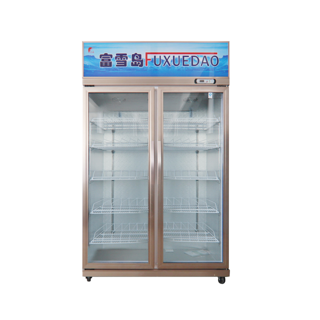 Double Door Showcase Cloor with Dynamic Cooling System