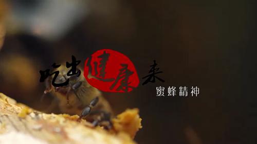 《吃出健康來》第四期: 《蜜蜂精神》