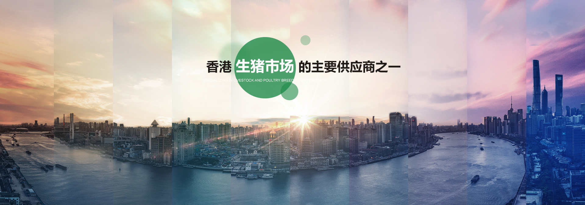 湖北金旭农业发展股份有限公司