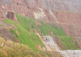 紫金山金銅礦露采748-796邊坡生態修復