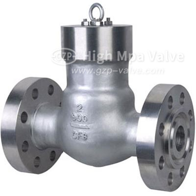 Flanged Pressure Seal Check Valve