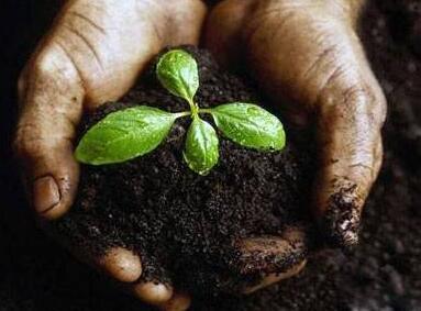 未来十年 土壤修复产业将达到万亿市场规模