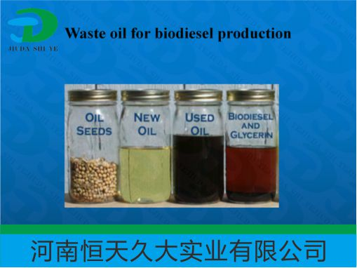 How to Build a Biodiesel plant? 年产2万吨生物柴油厂