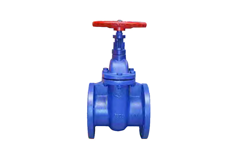 Wedge gate valve A+Z45T/W-10/16
