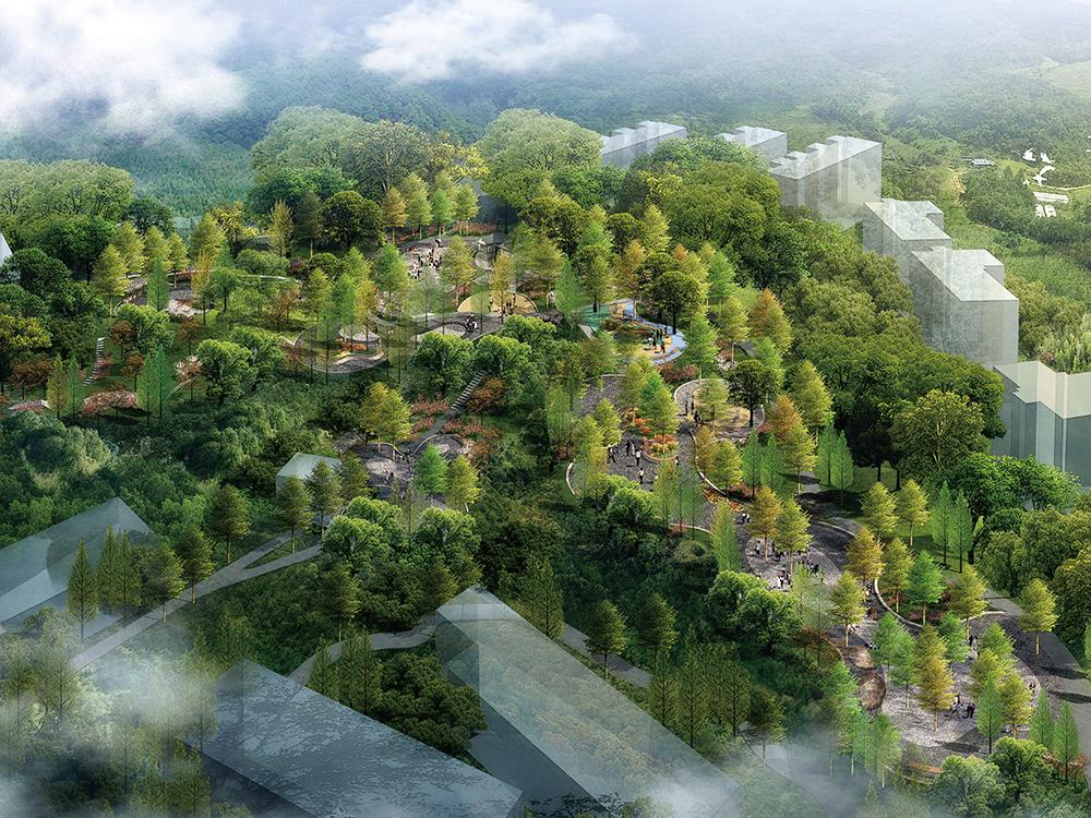 五龍山森林公園設計