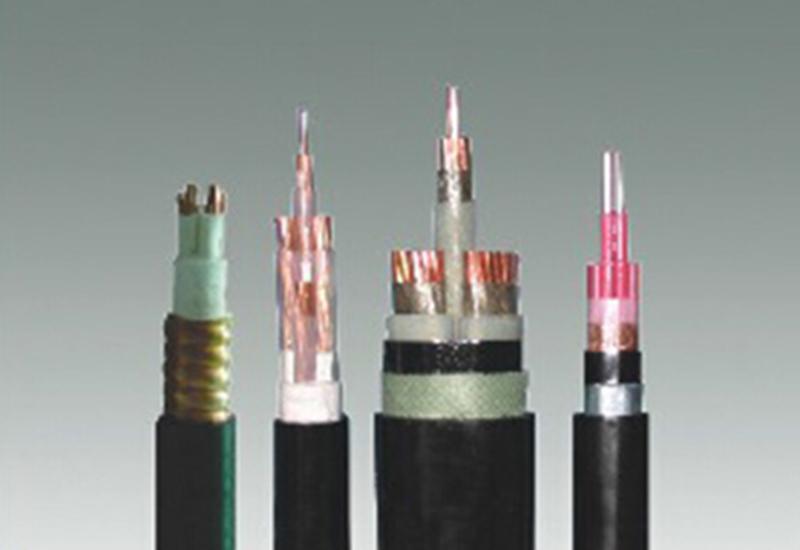 0.6/1kV防火低烟无卤电力电缆