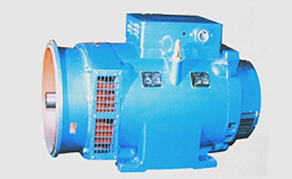 TFW大型高压相复励无刷同步发电机