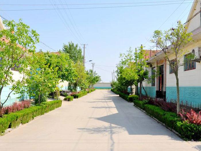 萊西市美麗鄉村建設PPP項目