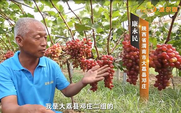 陕西省渭南市大荔县邓庄案例展示