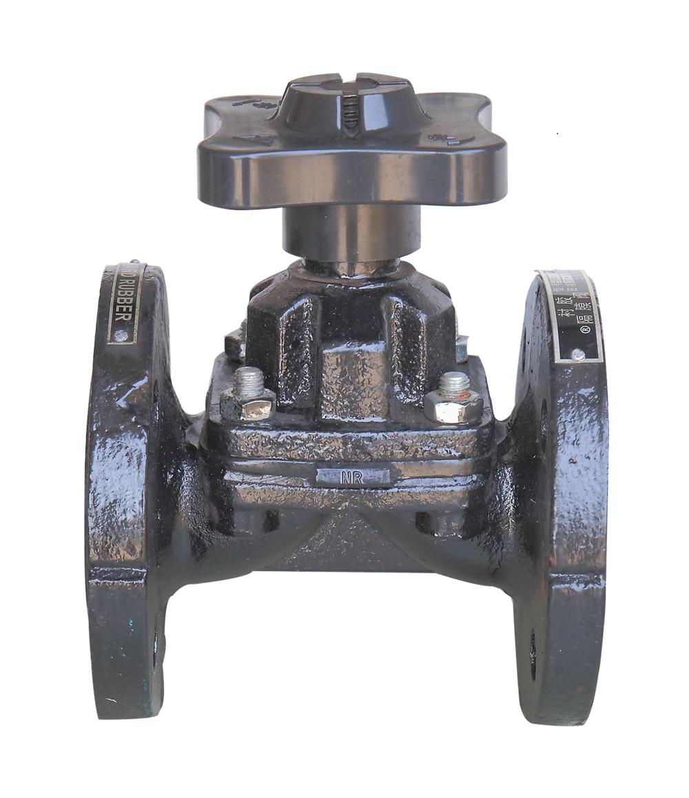 引進手動隔膜閥EG41J-10