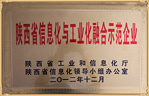 陜西省信息化與工業化融合示范企業