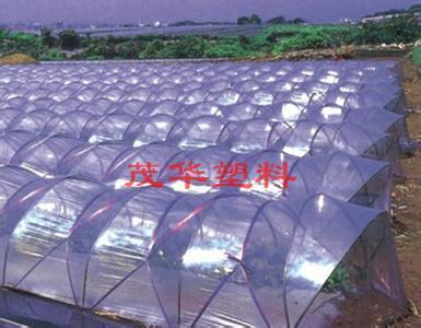 茂华塑料-转光膜