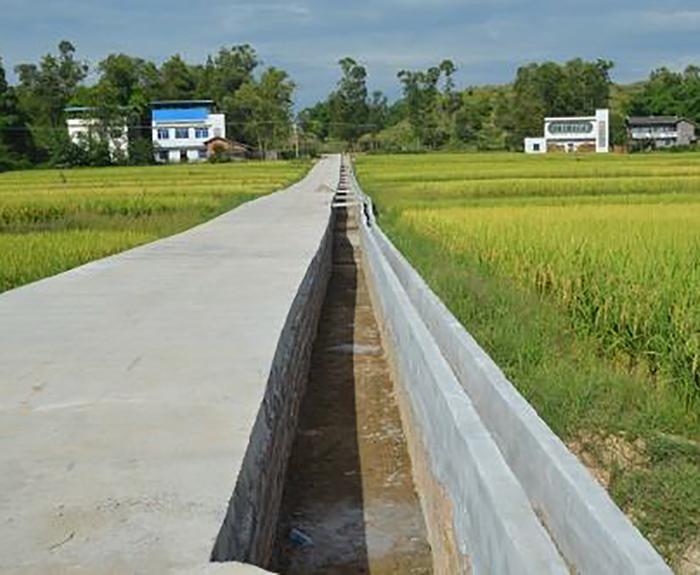 臨湘市2015年度文白鄉桂家灣畈農田水利建設項目第一標段