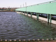 The waterproof and impervious project of the sewage treatment plant of Huainan City
