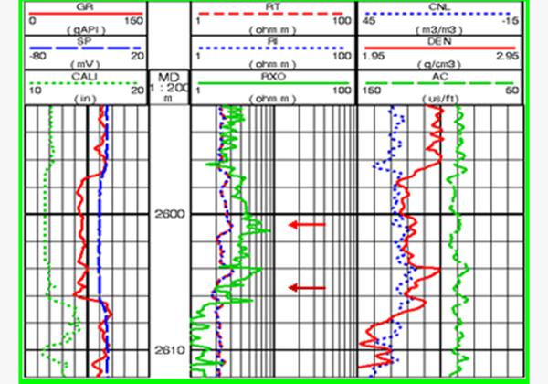 儲層流體類型快速識別技術