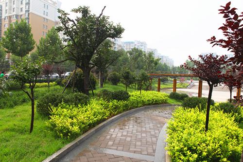 濟南市中井洪溝綜合整治一期(二標段)工程