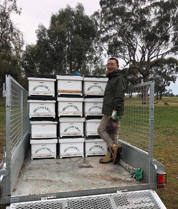 國際蜂情 | 澳大利亞養蜂見聞(三)