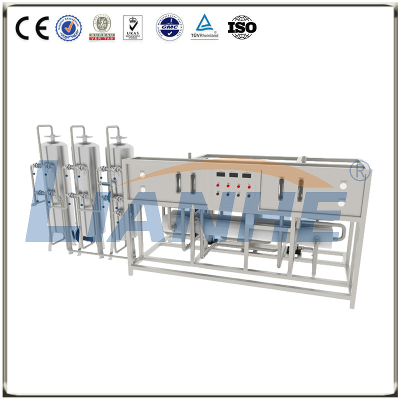 3000L/H Double-stage RO Water Treatment