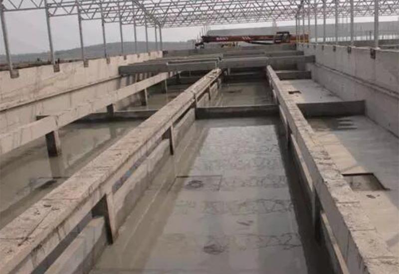 液泡糞排糞系統