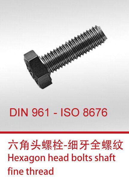 DIN961