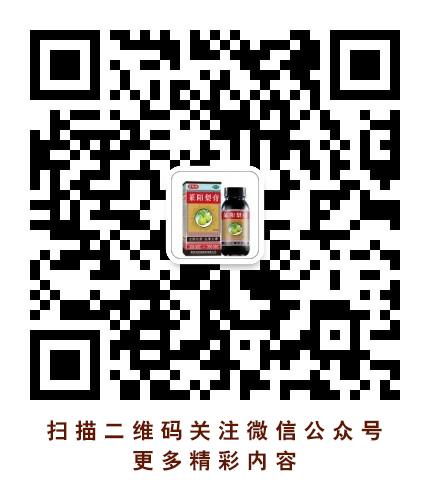 齊魯制藥官方微信
