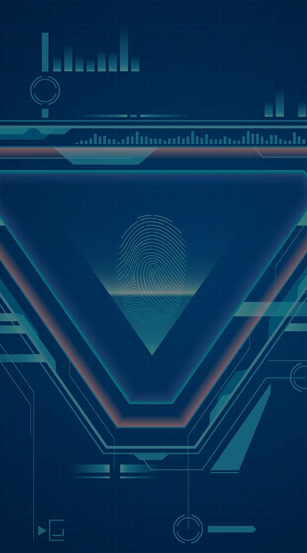 網絡安全和自主可控