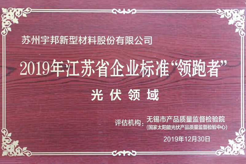 2019 Jiangsu Enterprise Standard Leader (المجال الكهروضوئي)