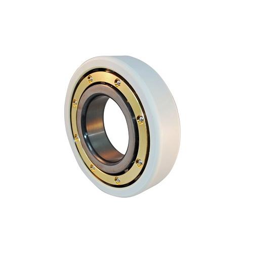 6319VL0241 Insulated Bearing