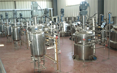 機械攪拌發酵罐
