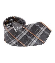 12-01真絲納米領帶