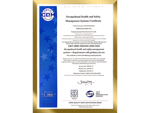 Occupational health and safety management Systems--Requirements with guidance for use