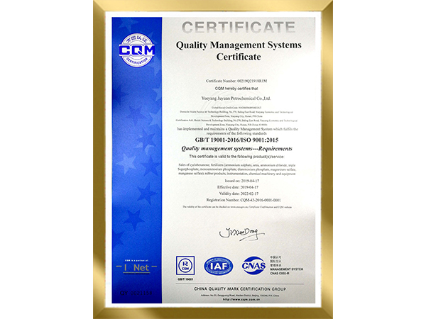 Quality management systems--Requirements