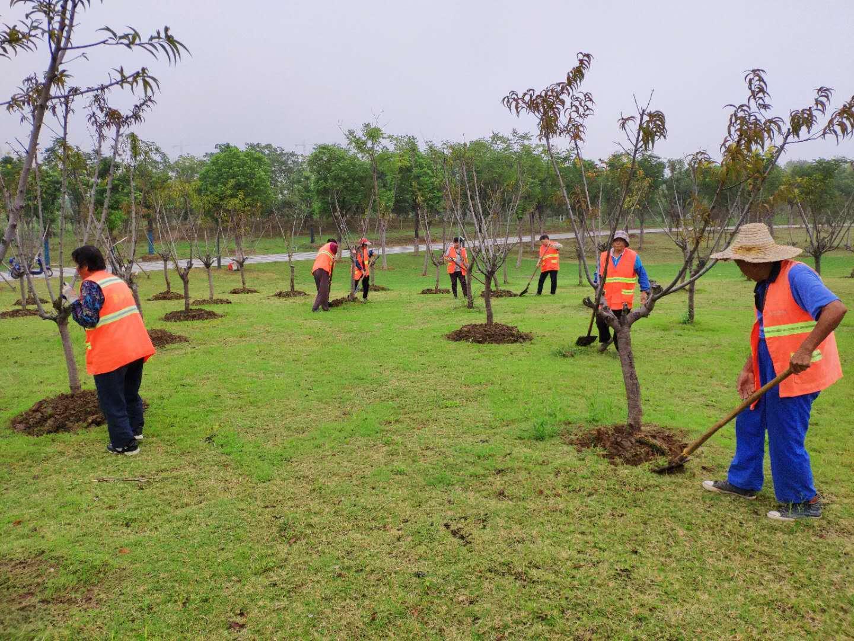 綠化施工項目