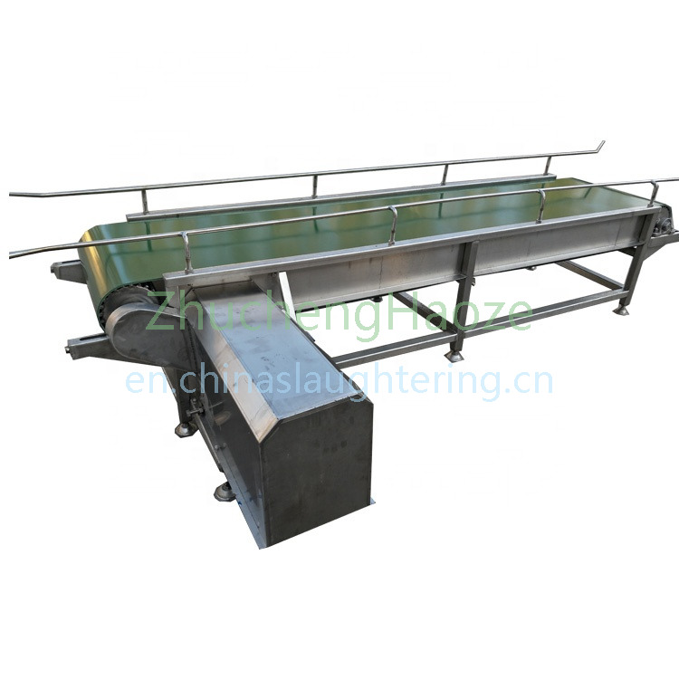 Belt type poultry cage conveyor