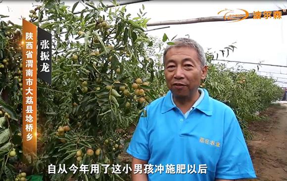 陕西省渭南市大荔县埝桥乡案例展示