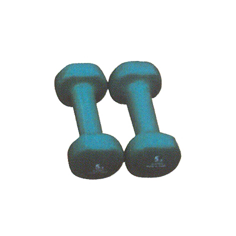 HQ-7003 Painting Dumbbell
