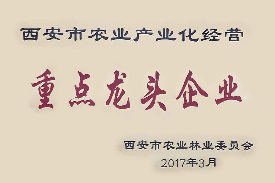 """熱烈祝賀西安同輝榮獲""""西安市重點龍頭企業""""稱號!"""