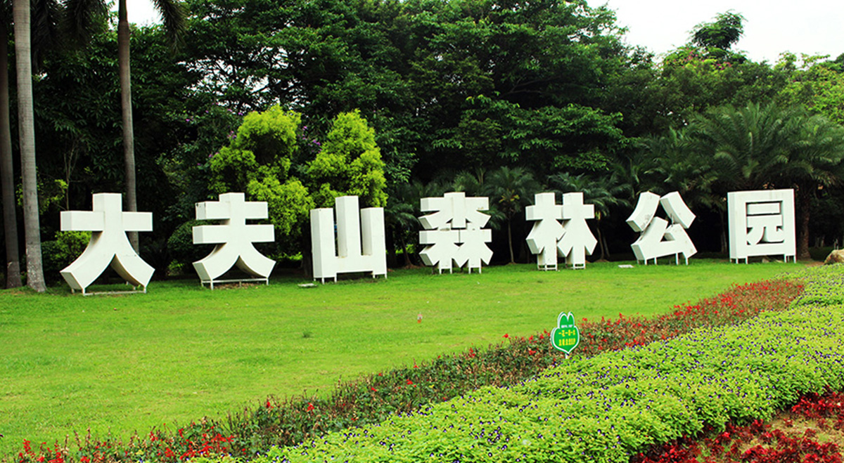 Dafu Mountain Forest Park