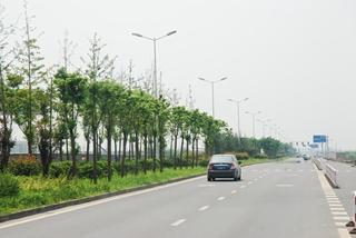 浙江省海寧尖山新區春富路工程