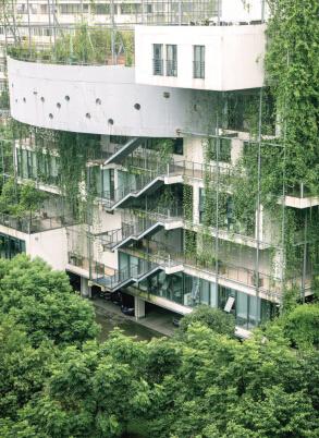 利用一切空间发展立体飞速直播录像,宁波要让绿色立起来