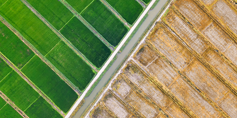 土地收儲項目